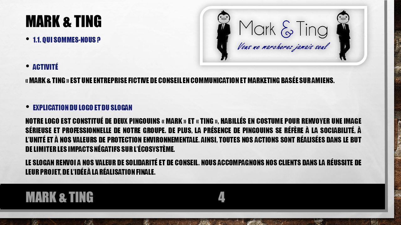 1.1. QUI SOMMES-NOUS ? ACTIVITÉ « MARK & TING » EST UNE ENTREPRISE FICTIVE DE CONSEIL EN COMMUNICATION ET MARKETING BASÉE SUR AMIENS. EXPLICATION DU L