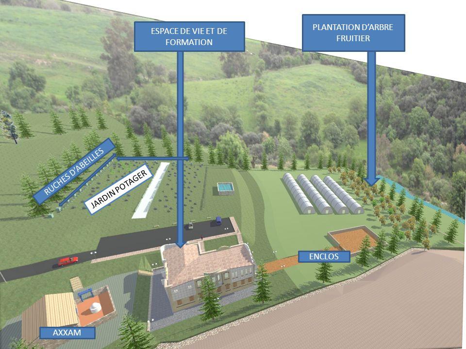 ESPACE DE VIE ET DE FORMATION PLANTATION DARBRE FRUITIER AXXAM ENCLOS RUCHES DABEILLES JARDIN POTAGER