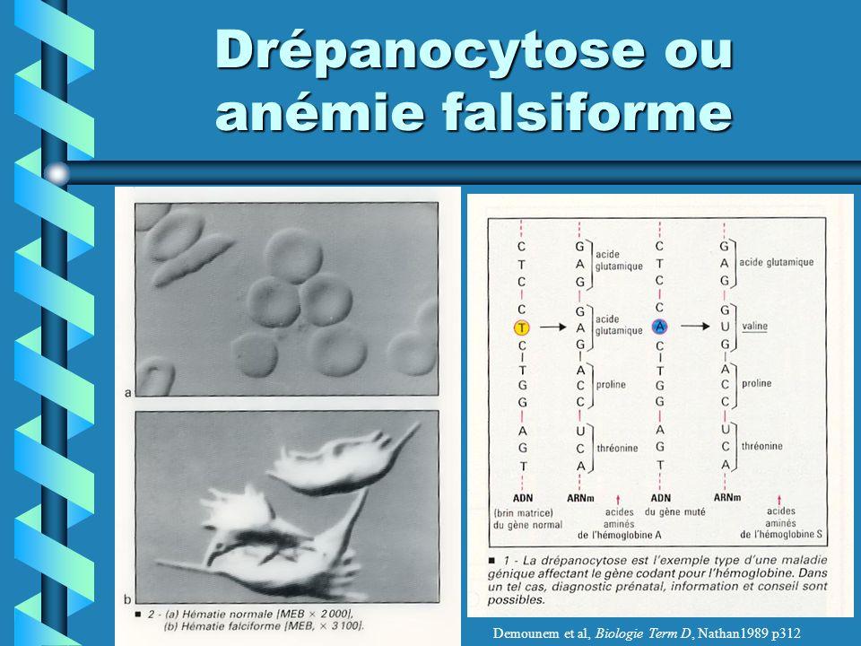 Drépanocytose ou anémie falsiforme Demounem et al, Biologie Term D, Nathan1989 p312