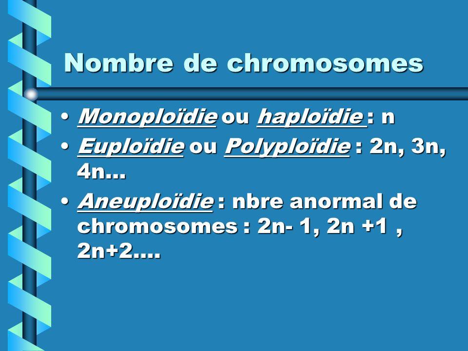 Nombre de chromosomes Monoploïdie ou haploïdie : nMonoploïdie ou haploïdie : n Euploïdie ou Polyploïdie : 2n, 3n, 4n…Euploïdie ou Polyploïdie : 2n, 3n