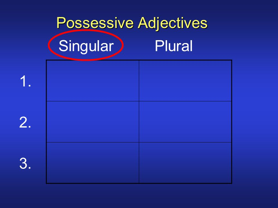 1. 2. 3. Singular Plural Possessive Adjectives