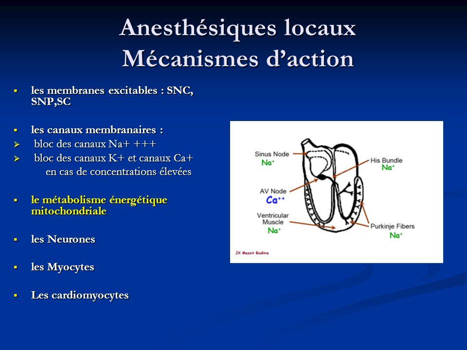 Anesthésiques locaux Mécanismes daction les membranes excitables : SNC, SNP,SC les membranes excitables : SNC, SNP,SC les canaux membranaires : les ca