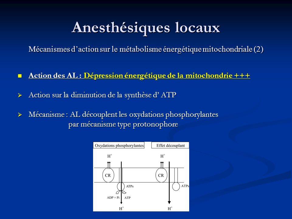 Anesthésiques locaux Mécanismes daction sur le métabolisme énergétique mitochondriale (2) Anesthésiques locaux Mécanismes daction sur le métabolisme é