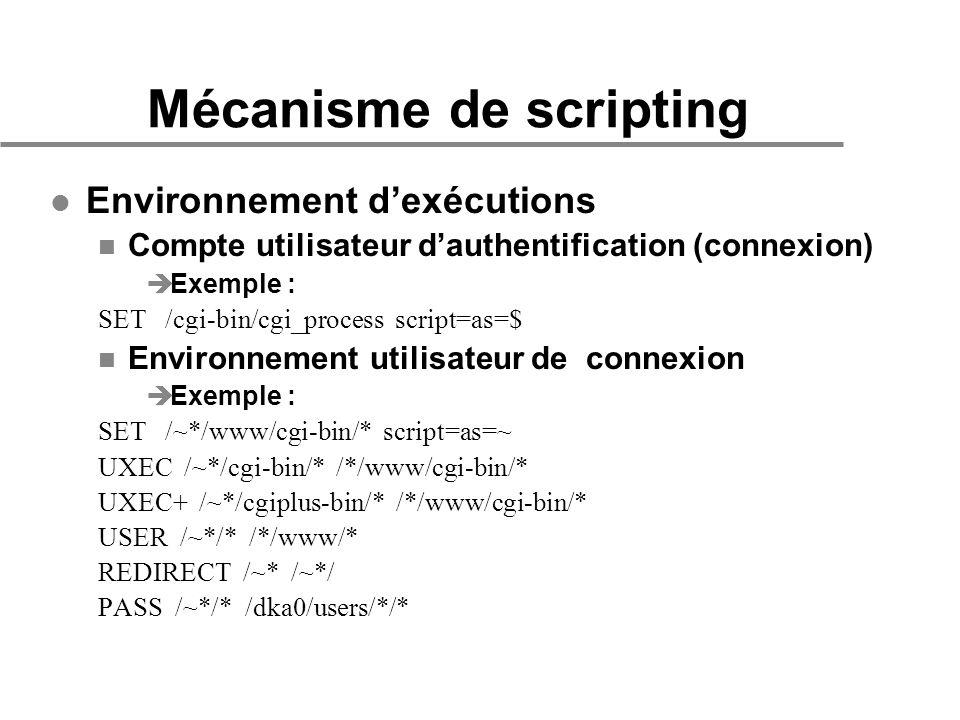 Mécanisme de scripting l Environnement dexécutions n Compte utilisateur dauthentification (connexion) èExemple : SET /cgi-bin/cgi_process script=as=$