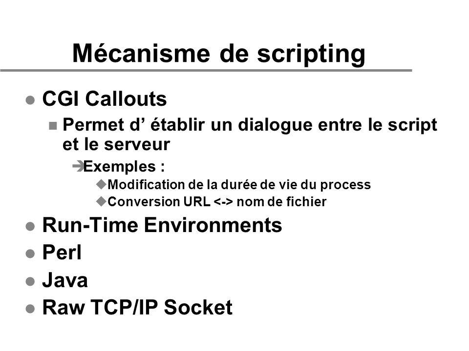 Mécanisme de scripting l CGI Callouts n Permet d établir un dialogue entre le script et le serveur èExemples : uModification de la durée de vie du pro