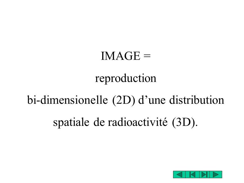 IMAGE = reproduction bi-dimensionelle (2D) dune distribution spatiale de radioactivité (3D).