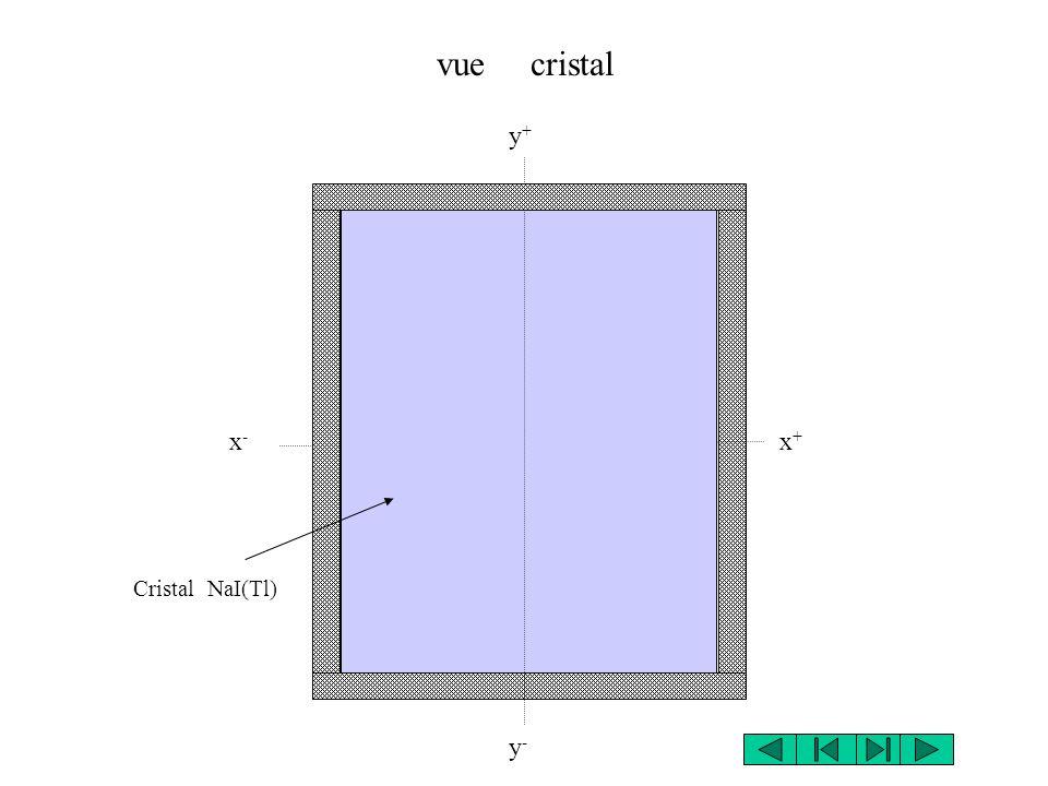 y+y+ Cristal NaI(Tl) y-y- x+x+ x-x- vue cristal