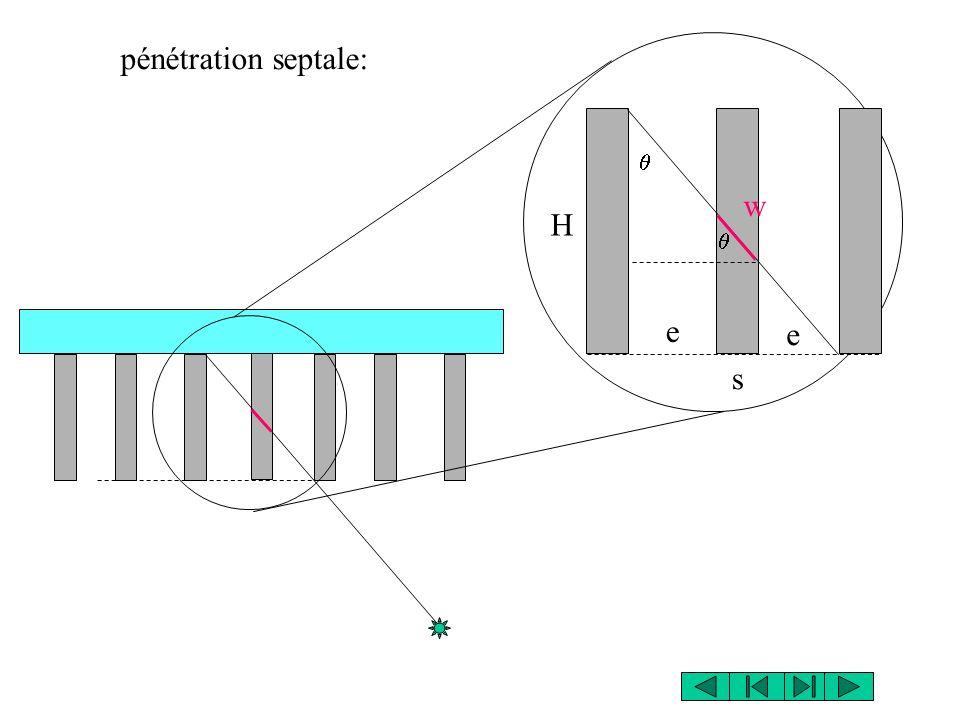pénétration septale: H e s w e