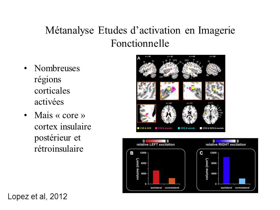 Métanalyse Etudes dactivation en Imagerie Fonctionnelle Nombreuses régions corticales activées Mais « core » cortex insulaire postérieur et rétroinsulaire Lopez et al, 2012