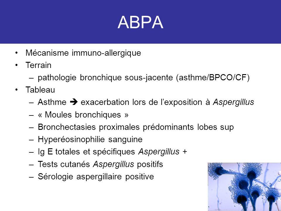 ABPA Mécanisme immuno-allergique Terrain –pathologie bronchique sous-jacente (asthme/BPCO/CF) Tableau –Asthme exacerbation lors de lexposition à Asper