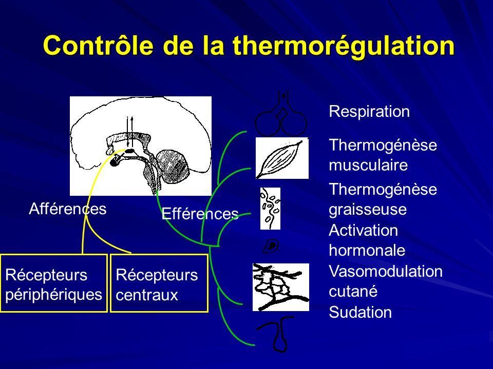 Contrôle de la thermorégulation Afférences Efférences Récepteurs périphériques Récepteurs centraux Thermogénèse musculaire Thermogénèse graisseuse Activation hormonale Vasomodulation cutané Sudation Respiration
