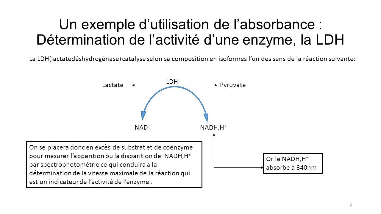 Un exemple dutilisation de labsorbance : Détermination de lactivité dune enzyme, la LDH 5 La LDH(lactatedéshydrogénase) catalyse selon sa composition en isoformes lun des sens de la réaction suivante: LactatePyruvate LDH NAD + NADH,H + Or le NADH,H + absorbe à 340nm On se placera donc en excès de substrat et de coenzyme pour mesurer lapparition ou la disparition de NADH,H + par spectrophotométrie ce qui conduira a la détermination de la vitesse maximale de la réaction qui est un indicateur de lactivité de lenzyme.