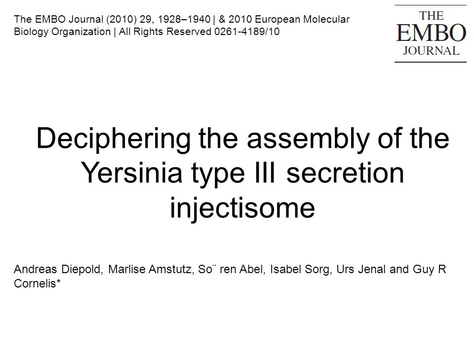 Deciphering the assembly of the Yersinia type III secretion injectisome Andreas Diepold, Marlise Amstutz, So¨ ren Abel, Isabel Sorg, Urs Jenal and Guy