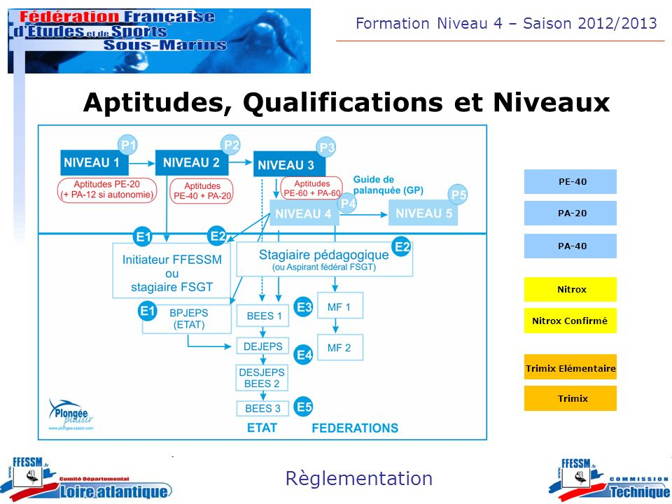 Formation Niveau 4 – Saison 2012/2013 Règlementation Aptitudes, Qualifications et Niveaux PA-20 PE-40 PA-40 Nitrox Confirmé Nitrox Trimix Trimix Eléme
