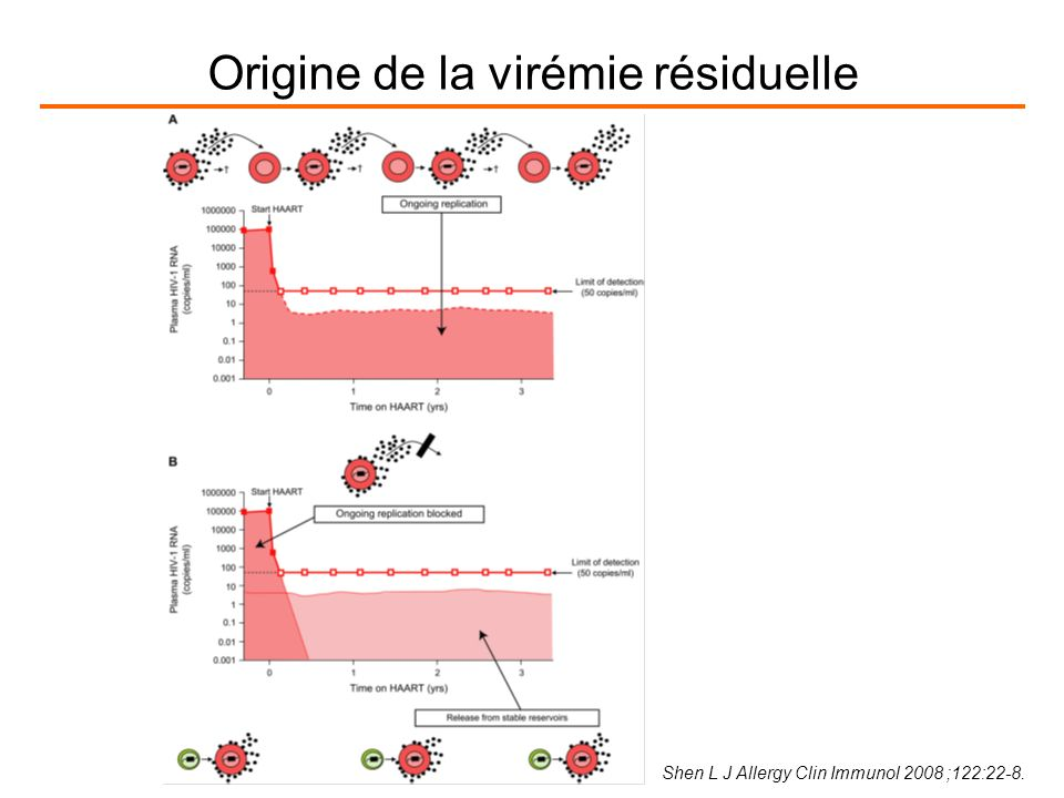 Shen L J Allergy Clin Immunol 2008 ;122:22-8. Origine de la virémie résiduelle