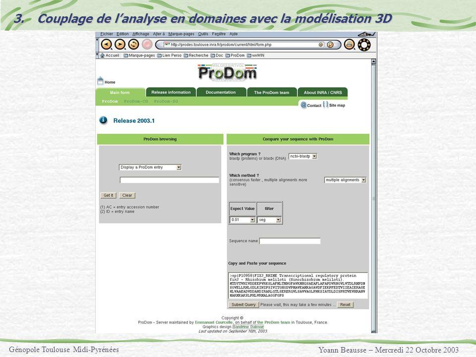 Yoann Beausse – Mercredi 22 Octobre 2003 Génopole Toulouse Midi-Pyrénées 3.Couplage de lanalyse en domaines avec la modélisation 3D