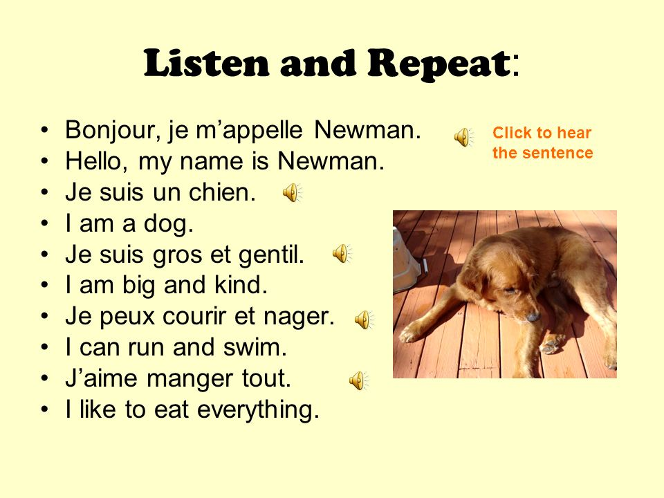 Listen and Repeat : Bonjour, je mappelle Newman.Hello, my name is Newman.