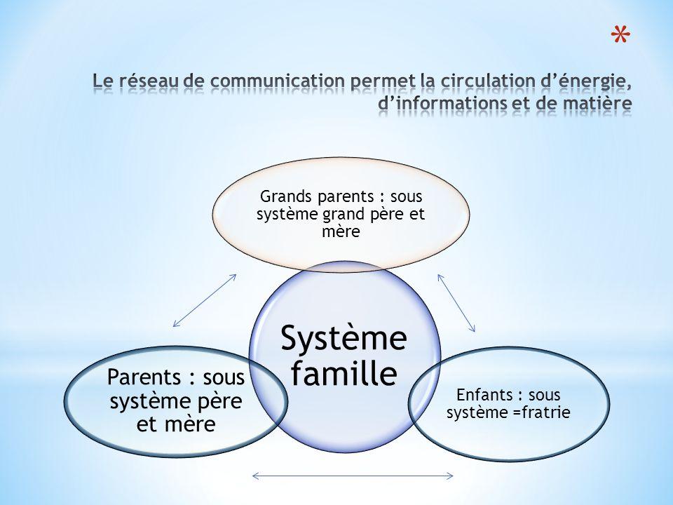 Système famille Grands parents : sous système grand père et mère Enfants : sous système =fratrie Parents : sous système père et mère