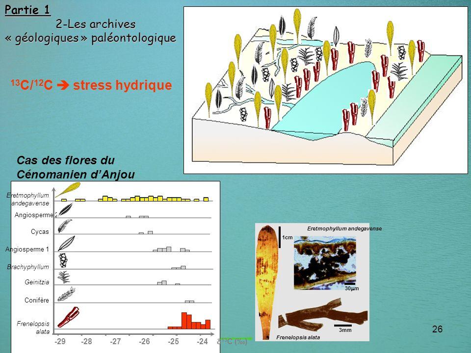 26 Partie 1 2-Les archives 2-Les archives « géologiques » paléontologique 13 C/ 12 C stress hydrique ? salinité croissante ? -29 -28 -27 -26 -25 -24 1