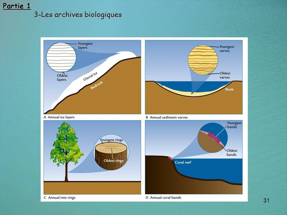 31 Partie 1 3-Les archives biologiques 3-Les archives biologiques