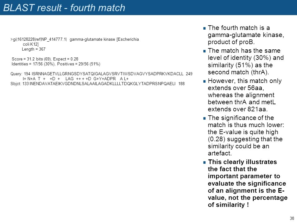 BLAST result - fourth match The fourth match is a gamma-glutamate kinase, product of proB. The match has the same level of identity (30%) and similari