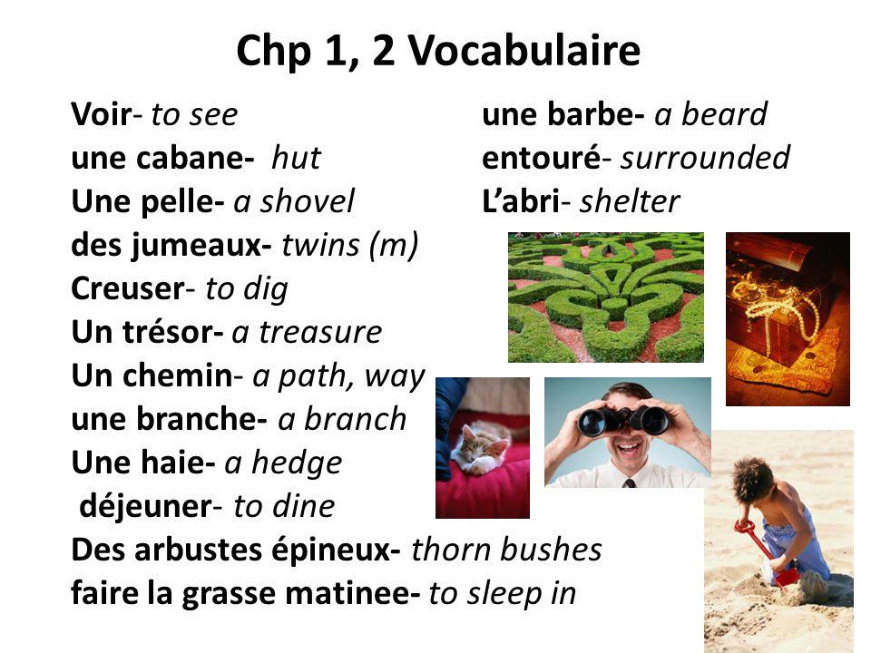 Chp 1, 2 Vocabulaire Voir- to see une barbe- a beard une cabane- hut entouré- surrounded Une pelle- a shovel Labri- shelter des jumeaux- twins (m) Cre