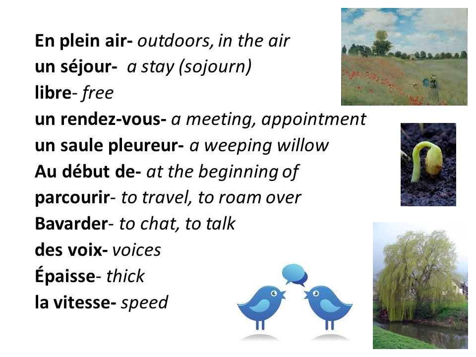 En plein air- outdoors, in the air un séjour- a stay (sojourn) libre- free un rendez-vous- a meeting, appointment un saule pleureur- a weeping willow