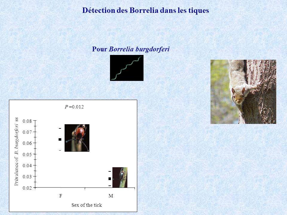 Détection des Borrelia dans les tiques Pour Borrelia burgdorferi P=0.012 0.02 0.03 0.04 0.05 0.06 0.07 0.08 FM Sex of the tick Prévalence of B. burgdo