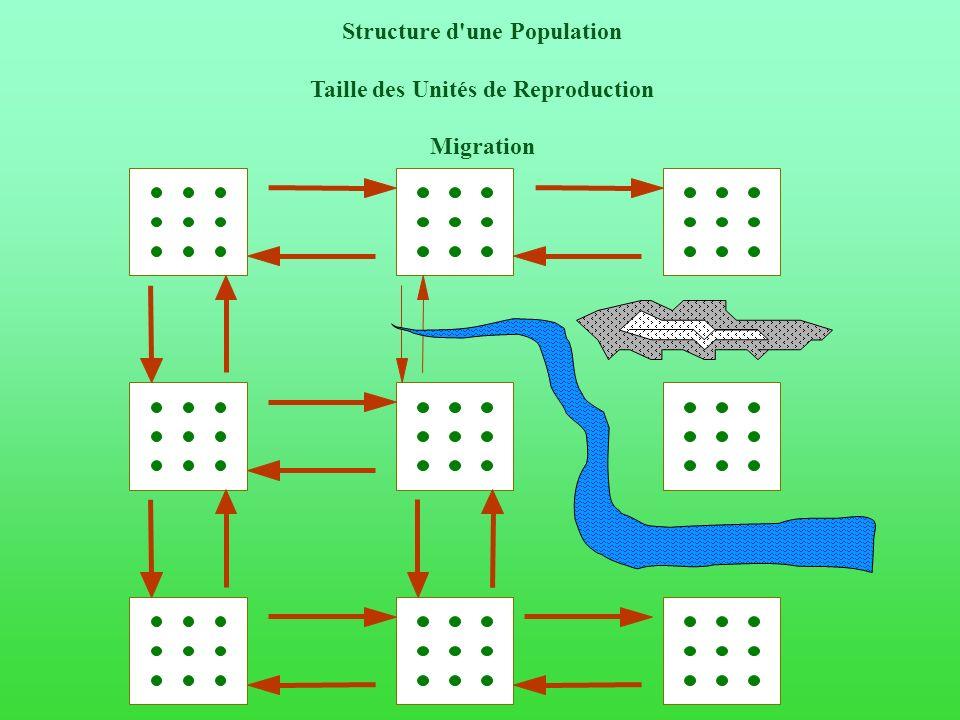 Structure d une Population Taille des Unités de Reproduction Migration