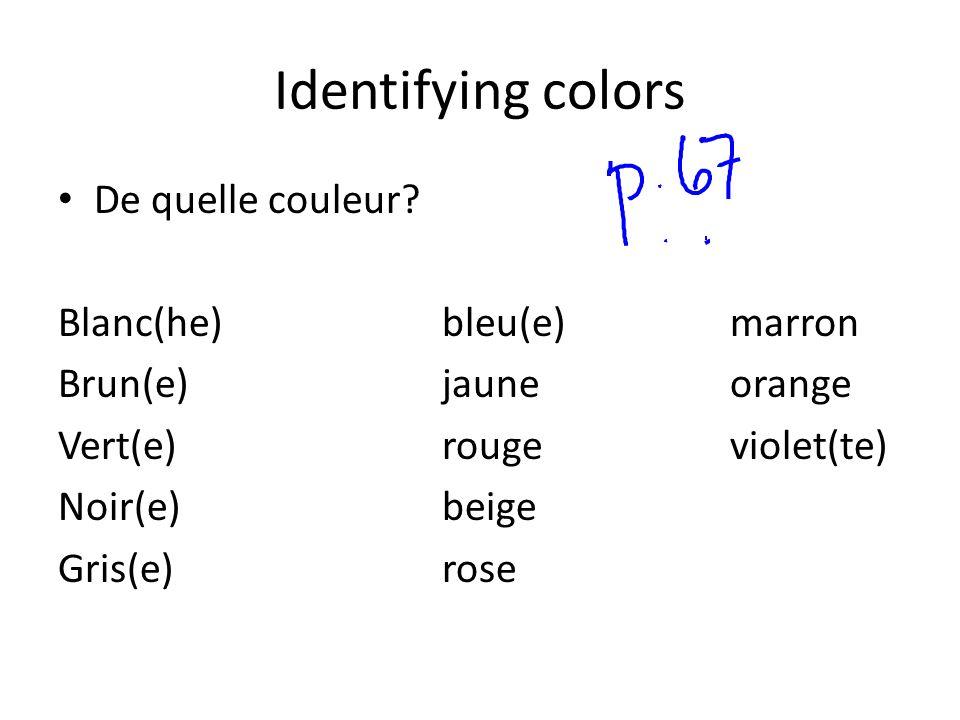Identifying colors De quelle couleur? Blanc(he)bleu(e)marron Brun(e)jauneorange Vert(e)rougeviolet(te) Noir(e)beige Gris(e)rose