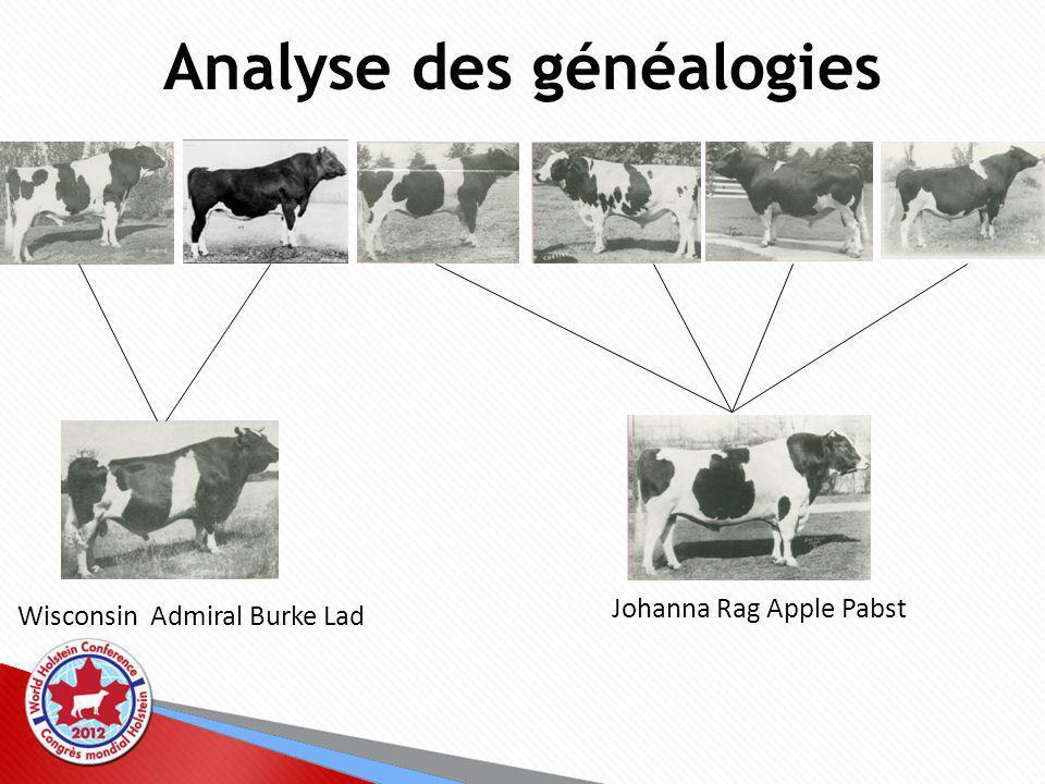 Analyse des généalogies Wisconsin Admiral Burke Lad Johanna Rag Apple Pabst
