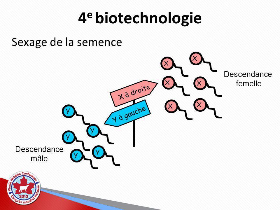 4 e biotechnologie Sexage de la semence Y Y Y Y Y X X X X X X X à droite Y à gauche Descendance femelle Descendance mâle