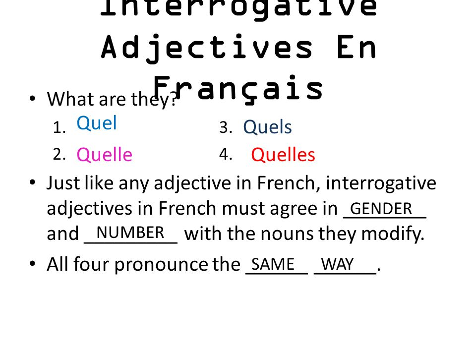 Interrogative Adjectives En Français What are they? 1.3. 2.4. Just like any adjective in French, interrogative adjectives in French must agree in ____