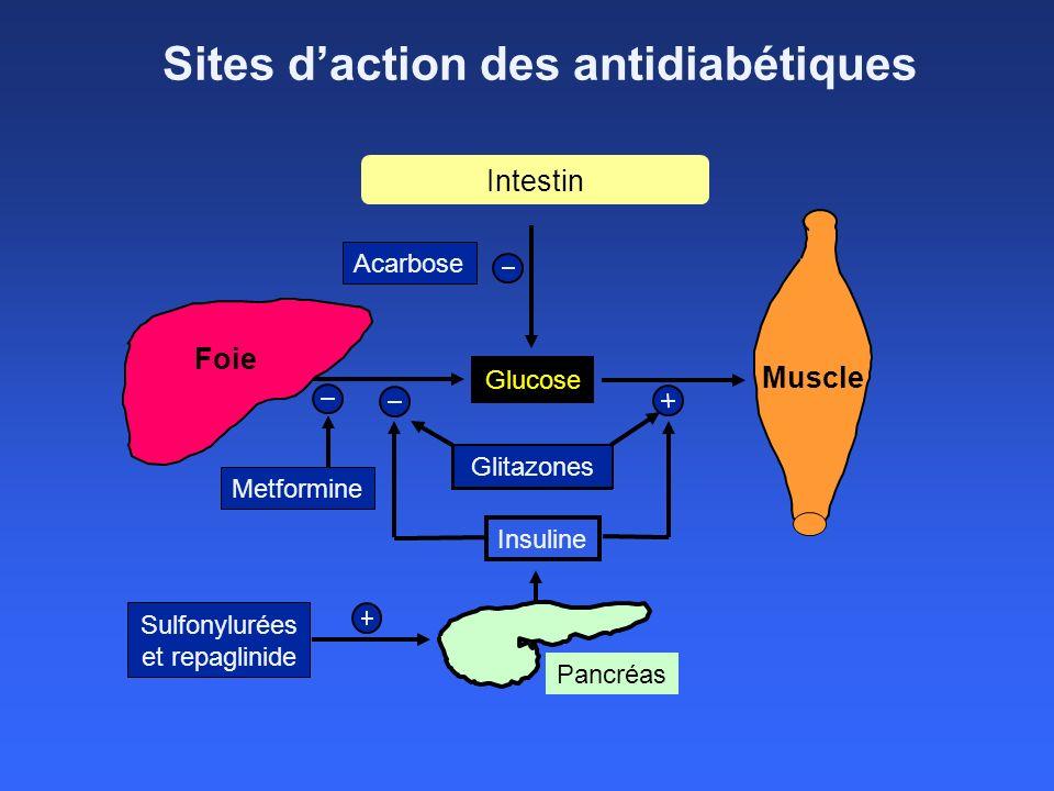 Sites daction des antidiabétiques Foie Muscle Metformine Sulfonylurées et repaglinide Glucose Insuline Pancréas Acarbose Glitazones Intestin Glitazone