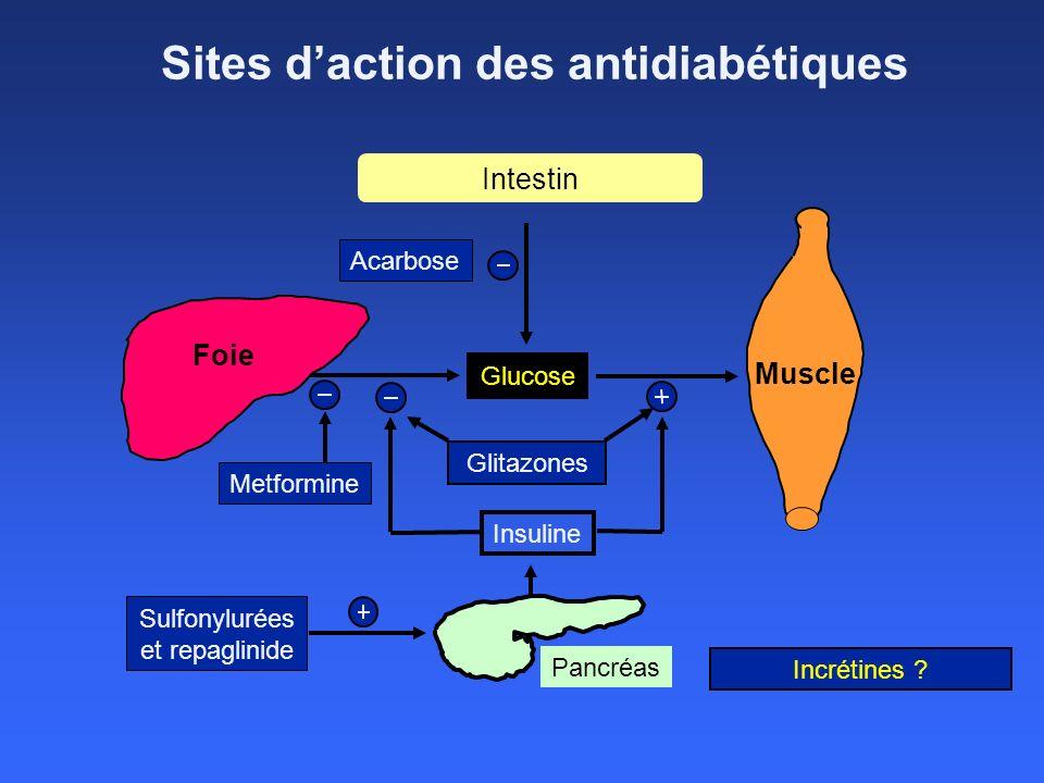 Sites daction des antidiabétiques Foie Muscle Metformine Sulfonylurées et repaglinide Glucose Insuline Pancréas Acarbose Glitazones Intestin Incrétine