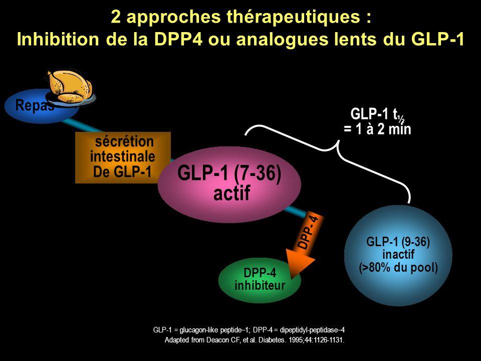 2 approches thérapeutiques : Inhibition de la DPP4 ou analogues lents du GLP-1 DPP-4 inhibiteur Adapted from Deacon CF, et al. Diabetes. 1995;44:1126-
