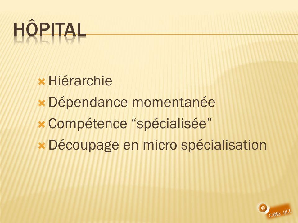Hiérarchie Dépendance momentanée Compétence spécialisée Découpage en micro spécialisation