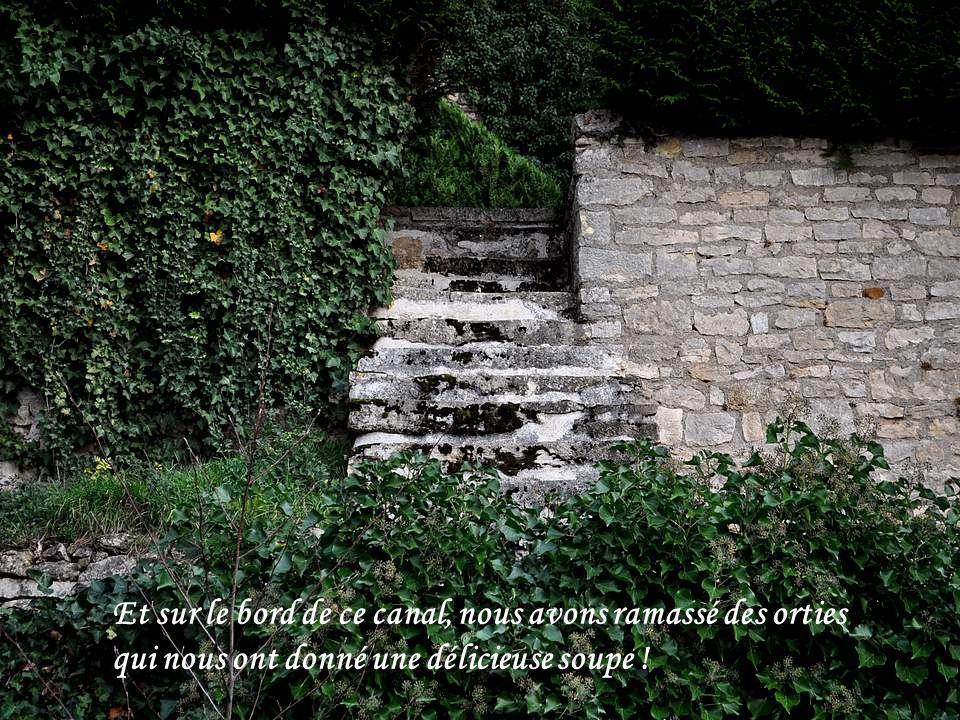 Du chemin de halage qui le borde, on aperçoit léglise, les remparts...