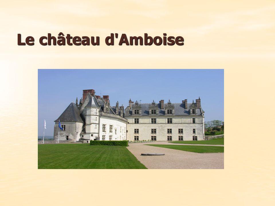 Construite sur un promontoire rocheux dominant la ville d Amboise et la Loire, cette ancienne forteresse médiévale a conservé de cette époque une enceinte, qui renferme l actuel château.