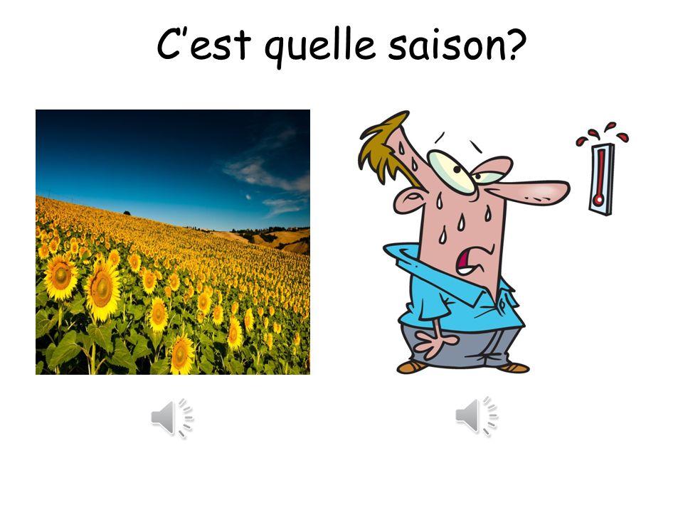 Cest quelle saison? Regardez les photos et Écoutez les descriptions du temps Decidez cest quelle saison?