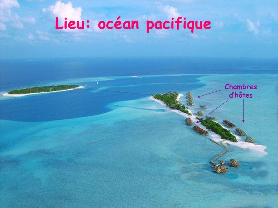 Lieu: océan pacifique Chambres dhôtes
