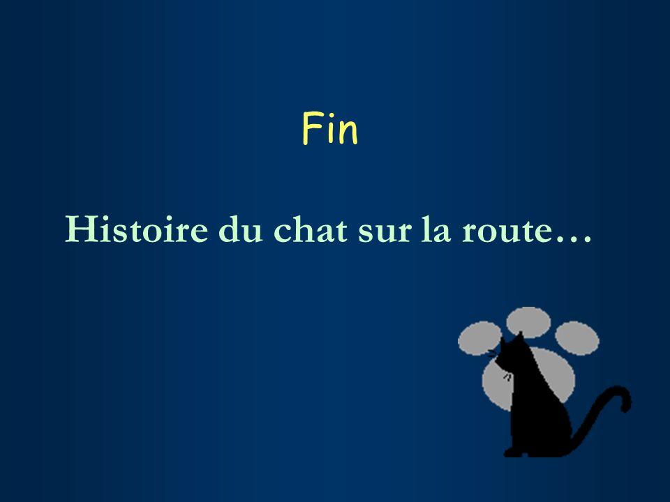 Fin Histoire du chat sur la route…