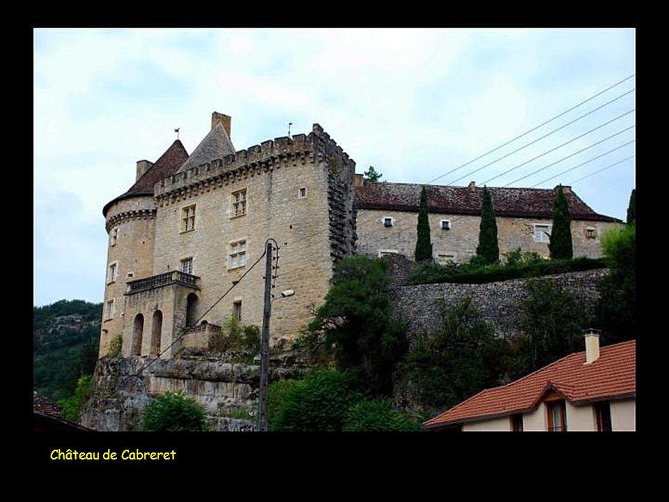 Château de Vezins du Levezou