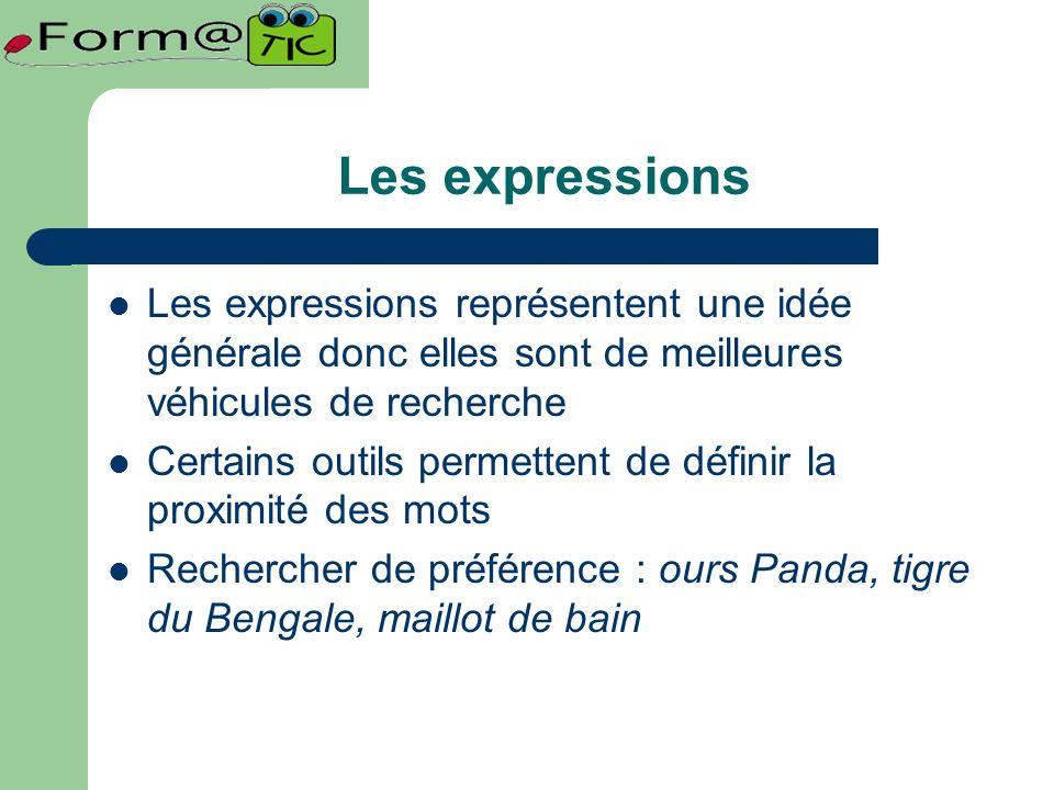 Les expressions Les expressions représentent une idée générale donc elles sont de meilleures véhicules de recherche Certains outils permettent de définir la proximité des mots Rechercher de préférence : ours Panda, tigre du Bengale, maillot de bain