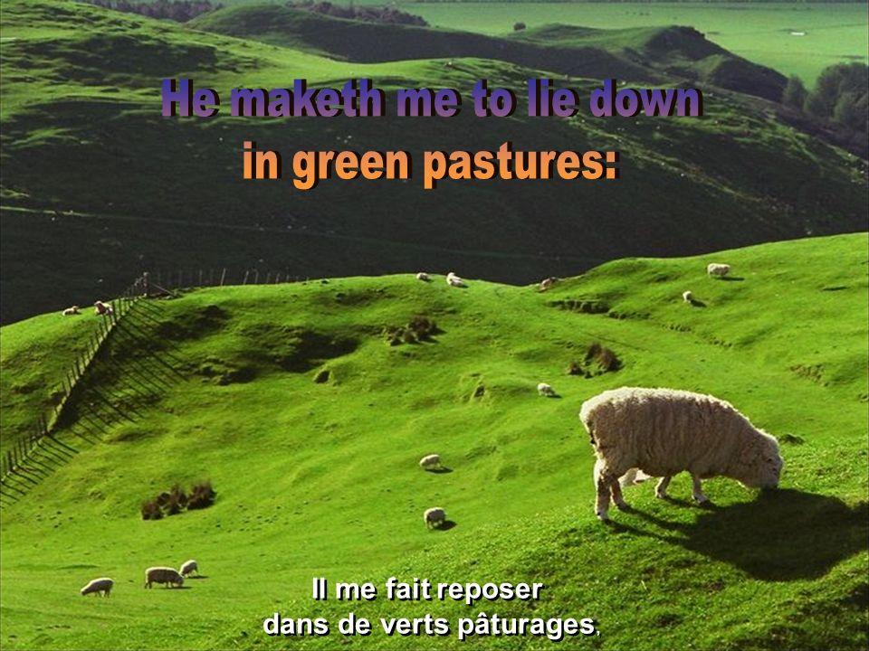 L Éternel est mon berger: je ne manquerai de rien.
