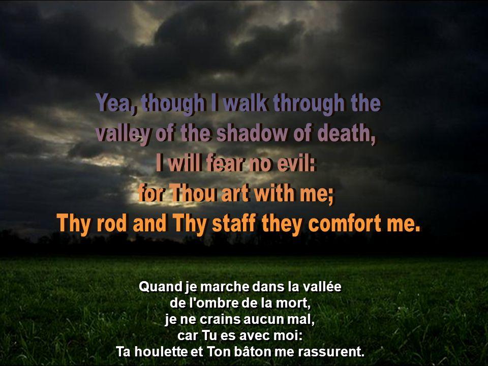Quand je marche dans la vallée de l ombre de la mort, je ne crains aucun mal, car Tu es avec moi: Ta houlette et Ton bâton me rassurent.