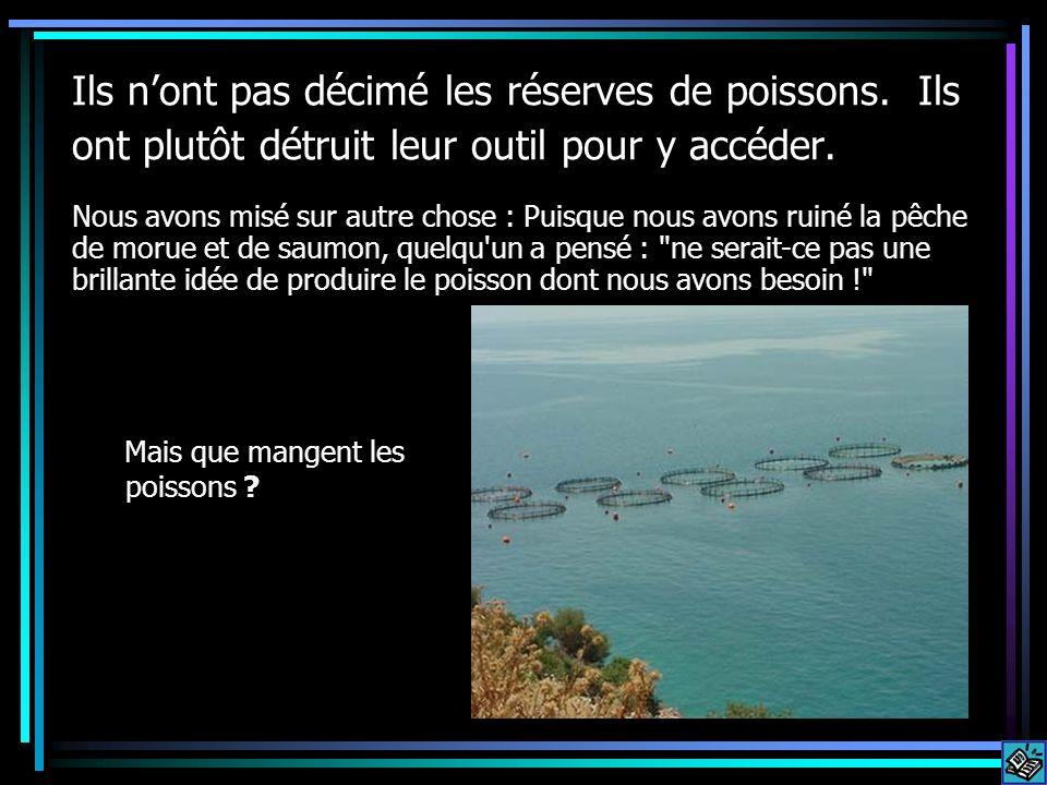 Ils nont pas décimé les réserves de poissons. Ils ont plutôt détruit leur outil pour y accéder. Mais que mangent les poissons ? Nous avons misé sur au