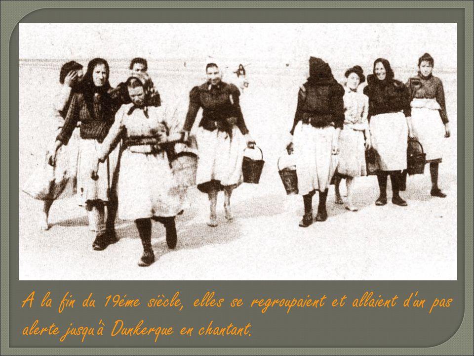 A la fin du 19éme siècle, elles se regroupaient et allaient d un pas alerte jusqu à Dunkerque en chantant.