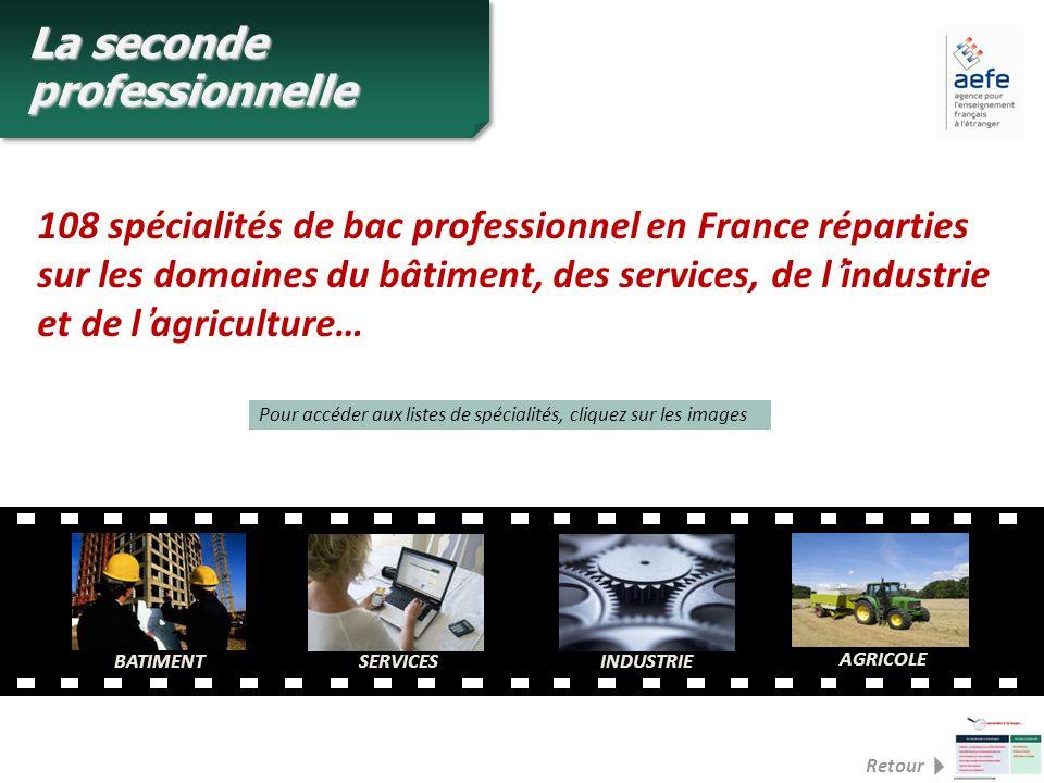 108 spécialités de bac professionnel en France réparties sur les domaines du bâtiment, des services, de lindustrie et de lagriculture… BATIMENTSERVICE