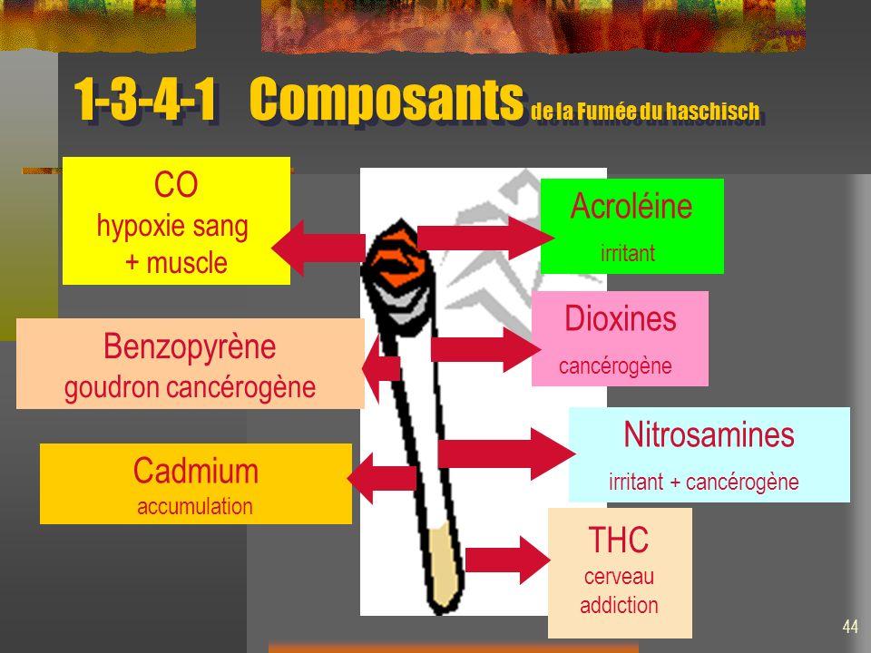 1-3-4-1Composants de la Fumée du haschisch Nitrosamines irritant + cancérogène CO hypoxie sang + muscle Cadmium accumulation Benzopyrène goudron cancérogène THC cerveau addiction Dioxines cancérogène Acroléine irritant 44